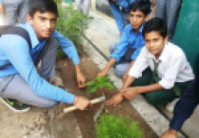 NSS Activities image